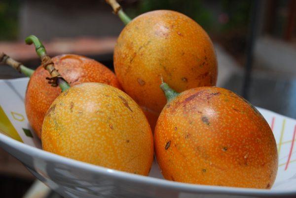 Peruvian Passion Fruit Puree
