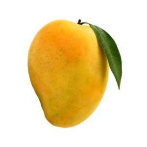 indian alphonso mango